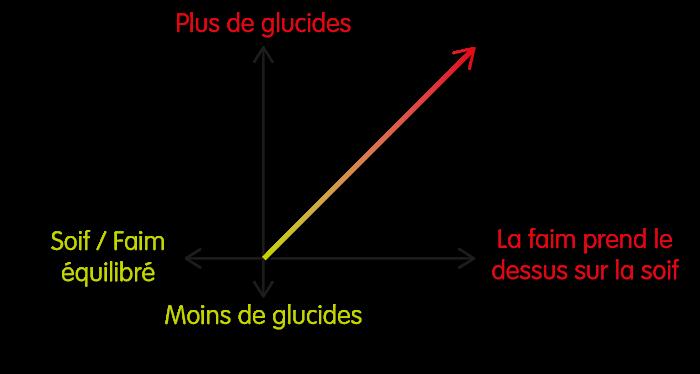 Plus une croquette contient de glucides, plus celle-ci va favoriser la sensation de faim au détriment de la sensation de faim.