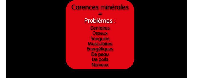 Carences minérales = Problèmes : Dentaires, osseux, sanguins, musculaires, énergétiques, de peau, de poils, nerveux.