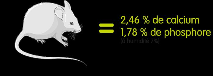 Une souris à 7% d'humidité contient 2,46% de calcium et 1,78% de phosphore.
