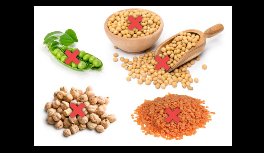 Les légumineuses les plus présentes dans les aliments pour chiens et chats que sont les pois, pois chiches, lentilles, luzerne et soja, sont toutes à éviter